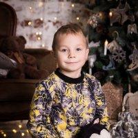 Новогоднее настроение :: Светлана Мокрецова