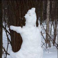 Про белых медведей :: Михаил Розенберг
