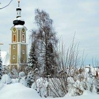 Снежная зима :: Alexander Andronik