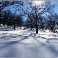 Снег искристый :: Андрей Заломленков
