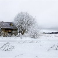 Картинка про старость и одиночество... :: Александр Никитинский