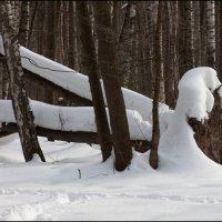 Не знаю зачем, но зиму хочется. :: Михаил Розенберг
