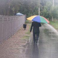 за любимой в дождь. :: lev