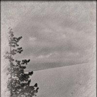 Одиночество... :: Ljudmila Korotkova