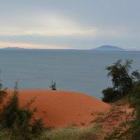 Красные пески :: Ирина Михайловна