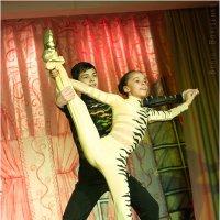 Акробатический прок-н-ролл :: Борис Борисенко