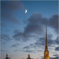 Новолуние :: Борис Борисенко