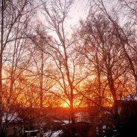 Утро :: Arina Kekshoeva
