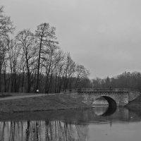 Свидание с гатчинским парком в декабре... :: Tatiana Markova