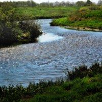 Вода, вода... :: Юрий
