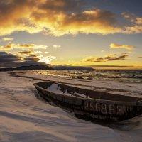 Прогулки по берегу :: Павел Федоров