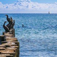 Балтийское Море :: Константин Прайс