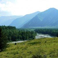 В долине Катуни :: Ольга Чистякова