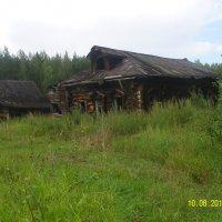 В заброшенной деревне :: Виктор Мухин