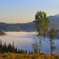 Спящий туман :: Сергей Чиняев