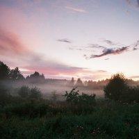Вечерний туман в Ермилово :: Владислав Филипенко