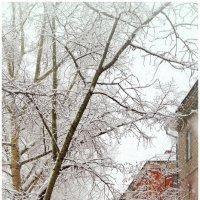 Снег... :: Владимир Михайлович Дадочкин