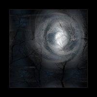 Лунная соната :: Александр Светлов