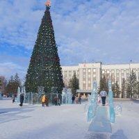 Новогодняя ёлка. :: юрий Амосов