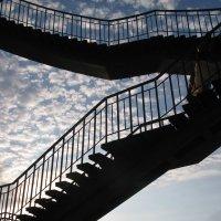 Студенческие наблюдения: учиться нужно всю жизнь и шаг за шагом, ступенька за ступенькой продвигатьс :: Алекс Аро Аро