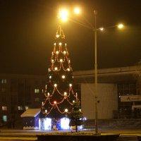 Новогодняя ёлка. :: Борис Митрохин