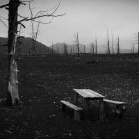 Приют усталого путешественника :: алексей афанасьев