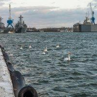 Морской поход боевым порядком :: Игорь Вишняков