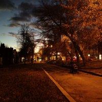 Вечер в парке :: Николай Филоненко
