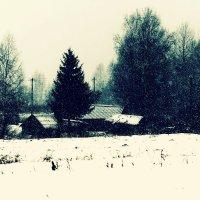 Зима в деревне :: Александр