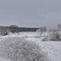 Утро... :: Валера39 Василевский.