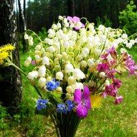 лесные цветы :: Леонид Натапов