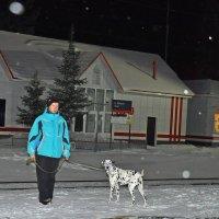 На прогулке :: Алексей http://fotokto.ru/id148151Морозов