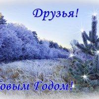 C новым годом, друзья! :: Мария Богуславская