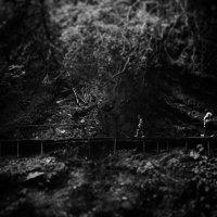 Край :: Александр Болотов