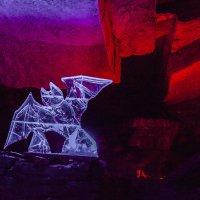 Летучия мышь в Кунгурских пещерах :: Александр Ефименко