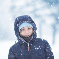 Сквозь снег и мороз. :: Алексей Хаустов