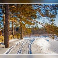 Морозное утро :: Юрий Глушков