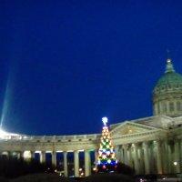 Новогодняя елка у стен Казанского собора! :: Светлана Калмыкова