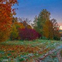 осень :: Владимир Орлов