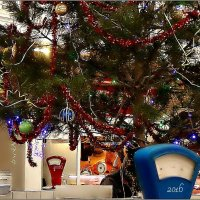 Весело, весело взвесим Новый Год!.. :: Кай-8 (Ярослав) Забелин