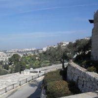 Вид Со смотровой площадки на Иерусалим :: Надежда