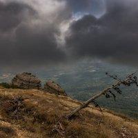 По туманным склонам :: Владимир Колесников