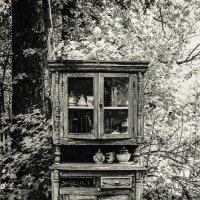 в саду :: Татьяна Толмачева