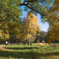 В парке :: Виталий