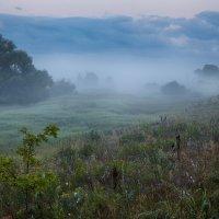 Стелется утро туманами рваными... :: Roman Lunin