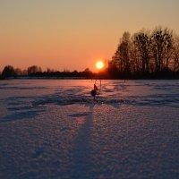 Зимняя рыбалка :: Светлана Ширан
