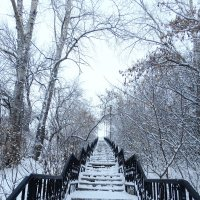 Лестница :: Александр Подгорный