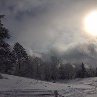 Сахалин. Трасса для сноуборда. :: Татьяна ❧