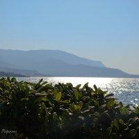 Утро в Греции :: Жанна Рафикова