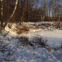 А всё же снега мало подвезли! :: Андрей Лукьянов